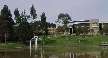 Arts building from lake